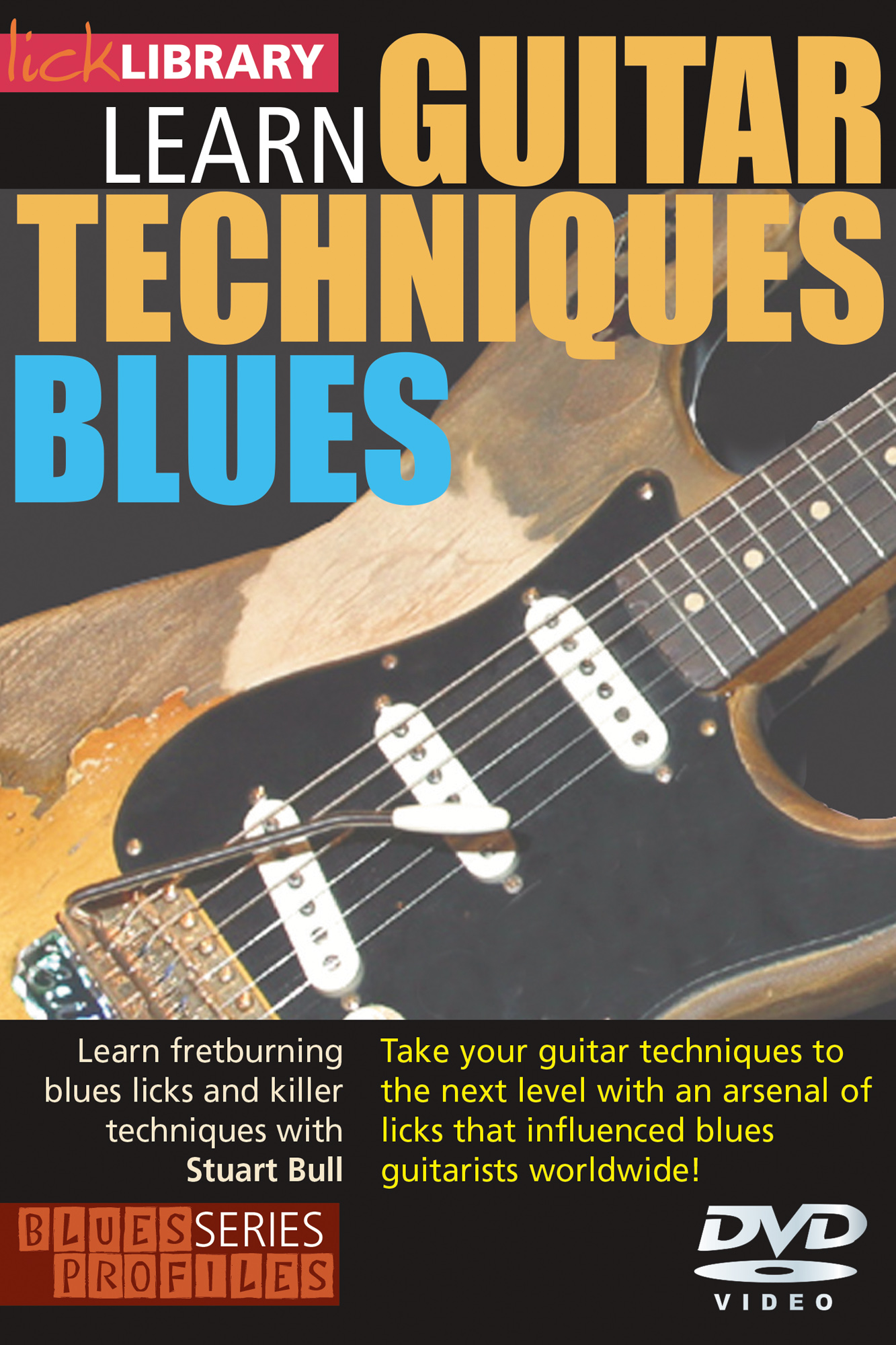 Learn To Play Guitar Techniques Blues